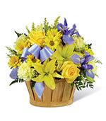 The Little Boy Blue Bouquet